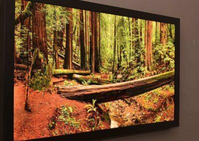 Wood Frame LED Light Box